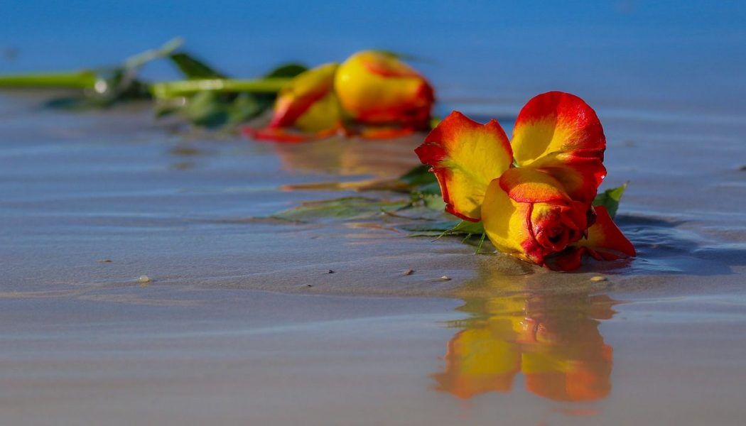 flowers on beach